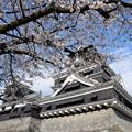 400年の歴史ドラマと出会う城、熊本城