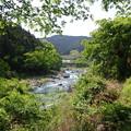 Photos: 新緑の御岳渓谷