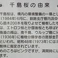 Photos: 『チシマザクラの由来』DSC00109