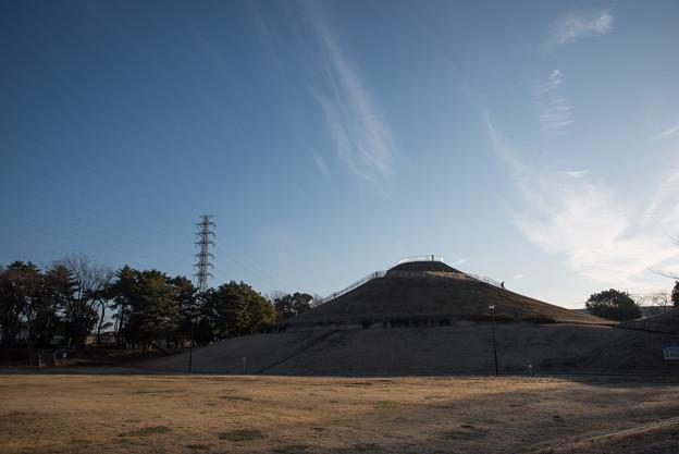【川和富士公園(これも富士山)】