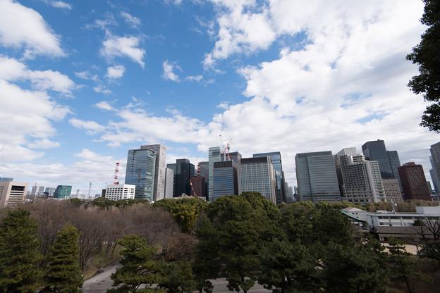 【皇居東御苑から見た大手町の景色】