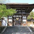 写真: IMG_7535松尾大社・楼門