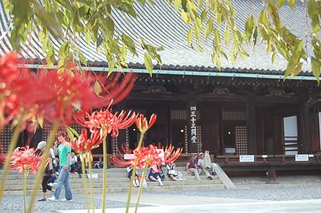京都 三十三間堂 蓮華王院