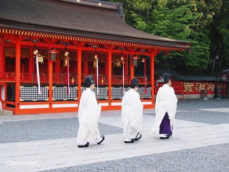伏見稲荷2014年05月04日_P5040685