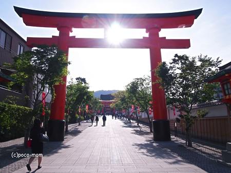 京都伏見稲荷2014年05月04日_P5040645