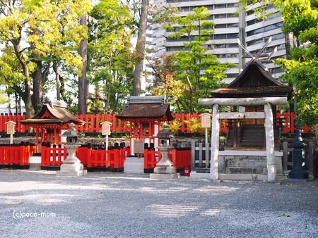 京都伏見稲荷 2014年05月04日_P5040646