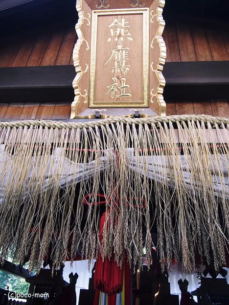 京都伏見稲荷2014年05月04日_P5040788
