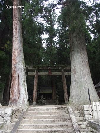 室生 龍穴神社 P9210164