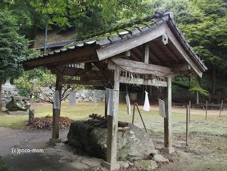 雷山雷神社 PA120371