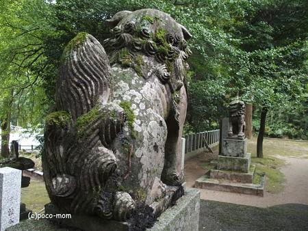雷山雷神社 PA120392