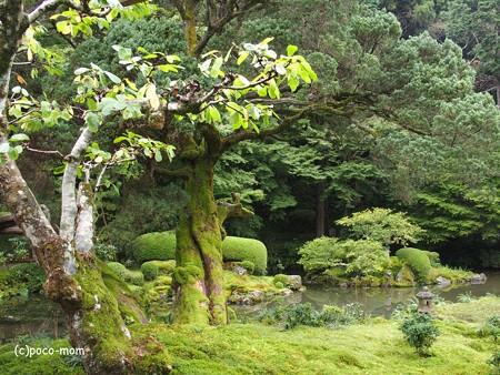 雷山観音 糸島 PA120425