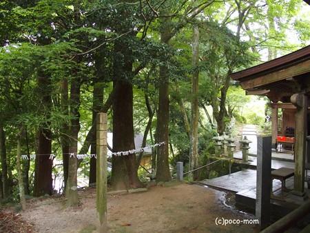 雷山観音堂PA120431