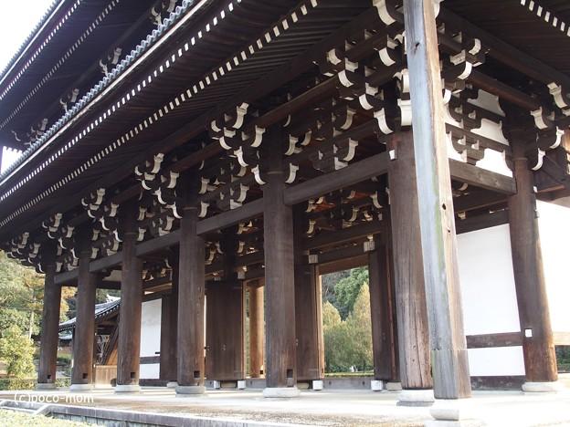 東福寺 P1110230