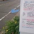 宮崎市、新たに中心市街地に自転車レーンを整備中1