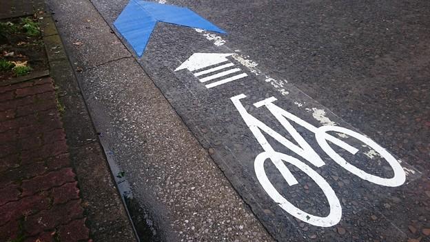 Photos: 宮崎市、新たに中心市街地に自転車レーンを整備中3