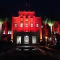 世界エイズデー2015・宮崎県庁本館ライトアップ4