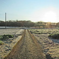 写真: 霜010-k