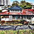 写真: 大川釣具店 (2)hdr
