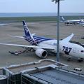 Boeing 787 in Tokyo International Airport
