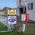 納沙布岬バス停