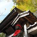 徳満寺 お地蔵さまと山門と紅葉と