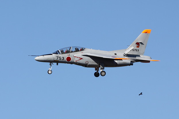 Photos: T-4(超絶トリミング)