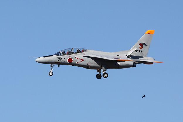 T-4(超絶トリミング)