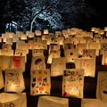 Photos: 紙袋キャンドル
