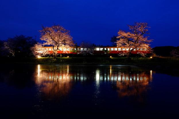 Photos: 飯給夜桜 宵