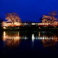 写真: 飯給夜桜 宵