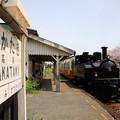 Photos: 里山トロッコ