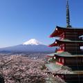 写真: 富士山と忠霊塔
