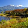 2015富士山麓の秋31「秋の湖畔」