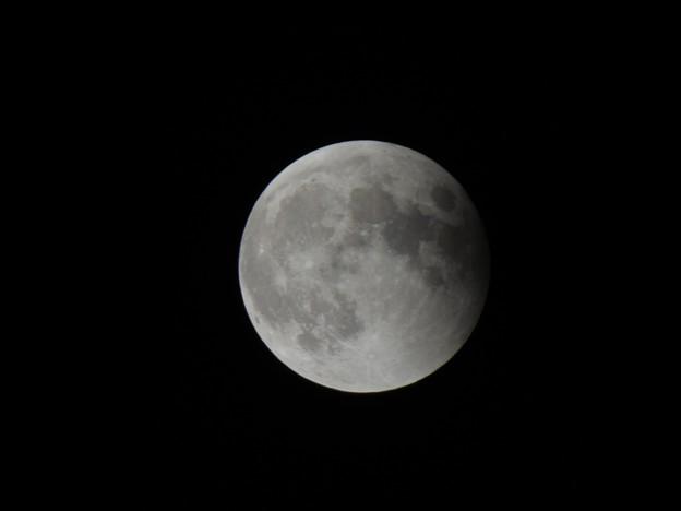 Photos: 月食終盤!