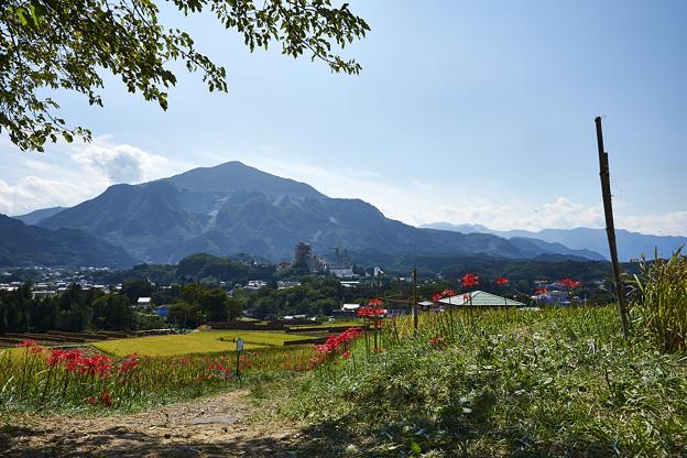 秋の武甲山