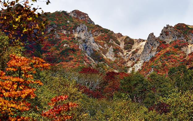 岩山の紅葉