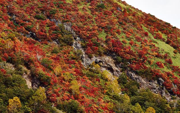 火山と紅葉