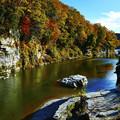 Photos: 荒川の紅葉