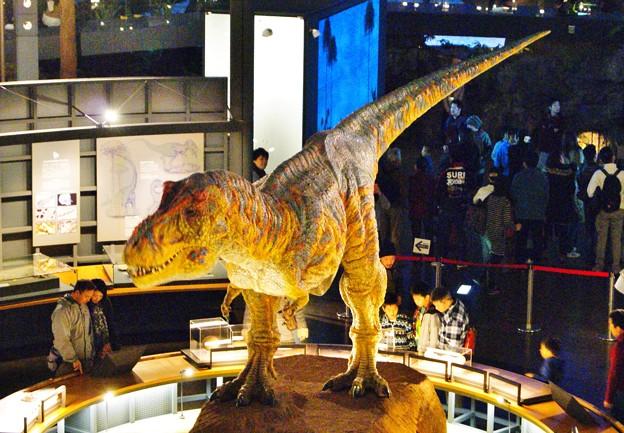 ティラノザウルス動刻 (2)