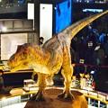 Photos: ティラノザウルス動刻 (2)