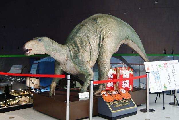 フクイサウルス.テトリエンシス
