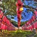 静岡護国神社 みたま祭(2) HDR