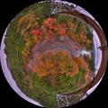「眼下に広がる紅葉」 井川湖「夢のつり橋」よりの眺望 魚眼風250度 HDR