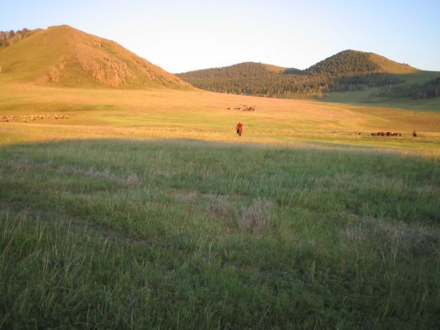 モンゴルの平原