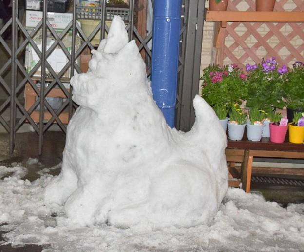 雪の日の力作