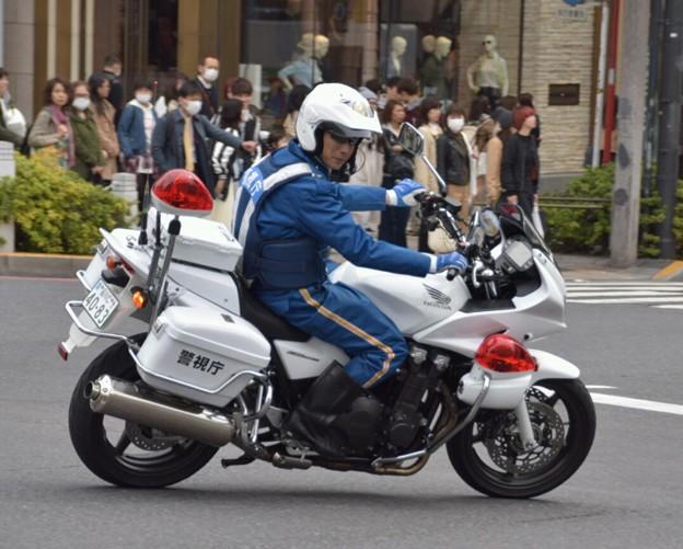 Photos: DSC_0282_1