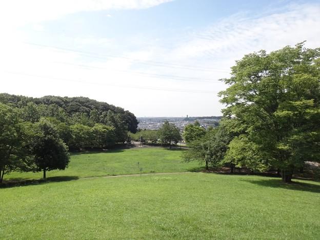 140802 真光寺公園