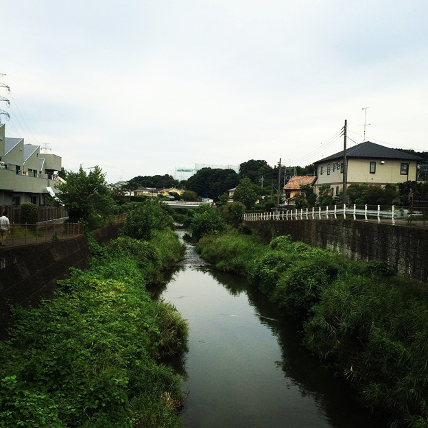 140915 鶴見川
