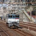 写真: 単75レ EF65 2057 1