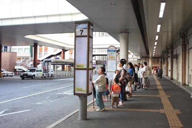 松戸駅西口 京成バス 7番のりば